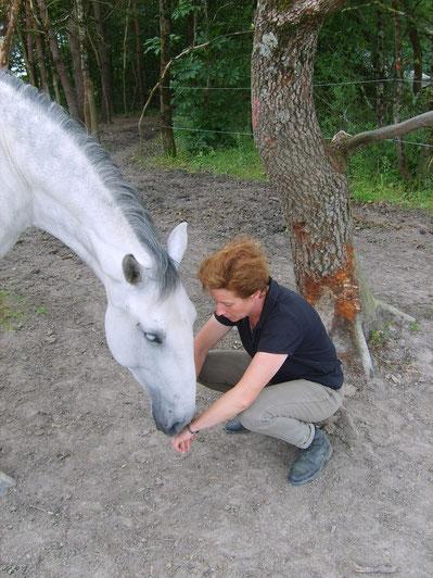 Généreux de sa présence, sans jugement, le cheval nous permet de faire l'expérience d'un contact libre, sans attentes.