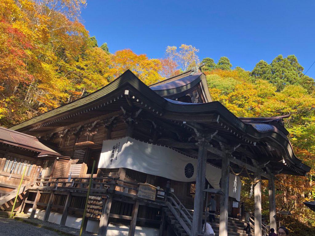 path 日本 語 版
