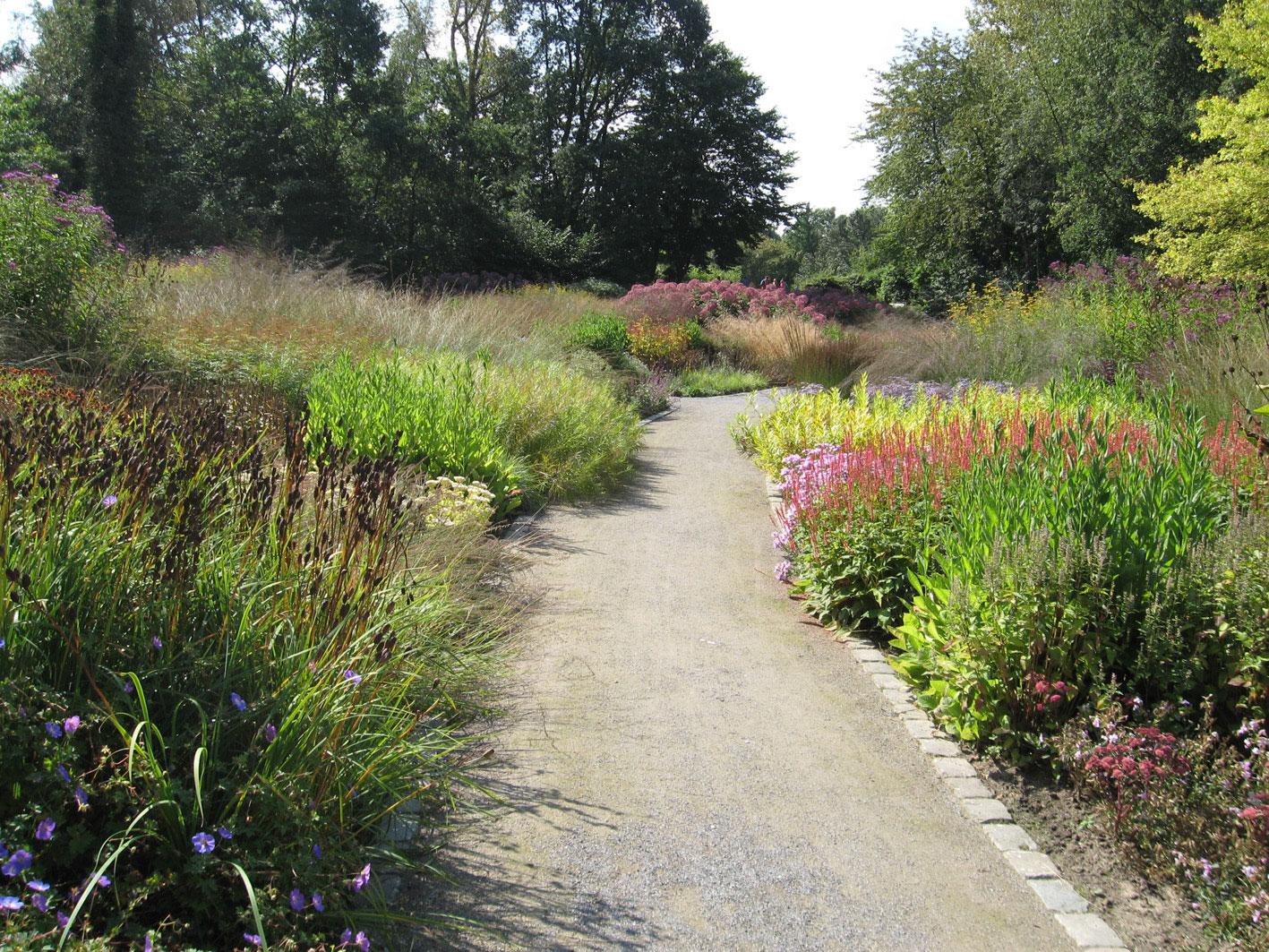 Maximales staudenerlebnis piet oudolfs stauden und gr serpflanzungen im maximilianpark in - Gartenplanung hannover ...