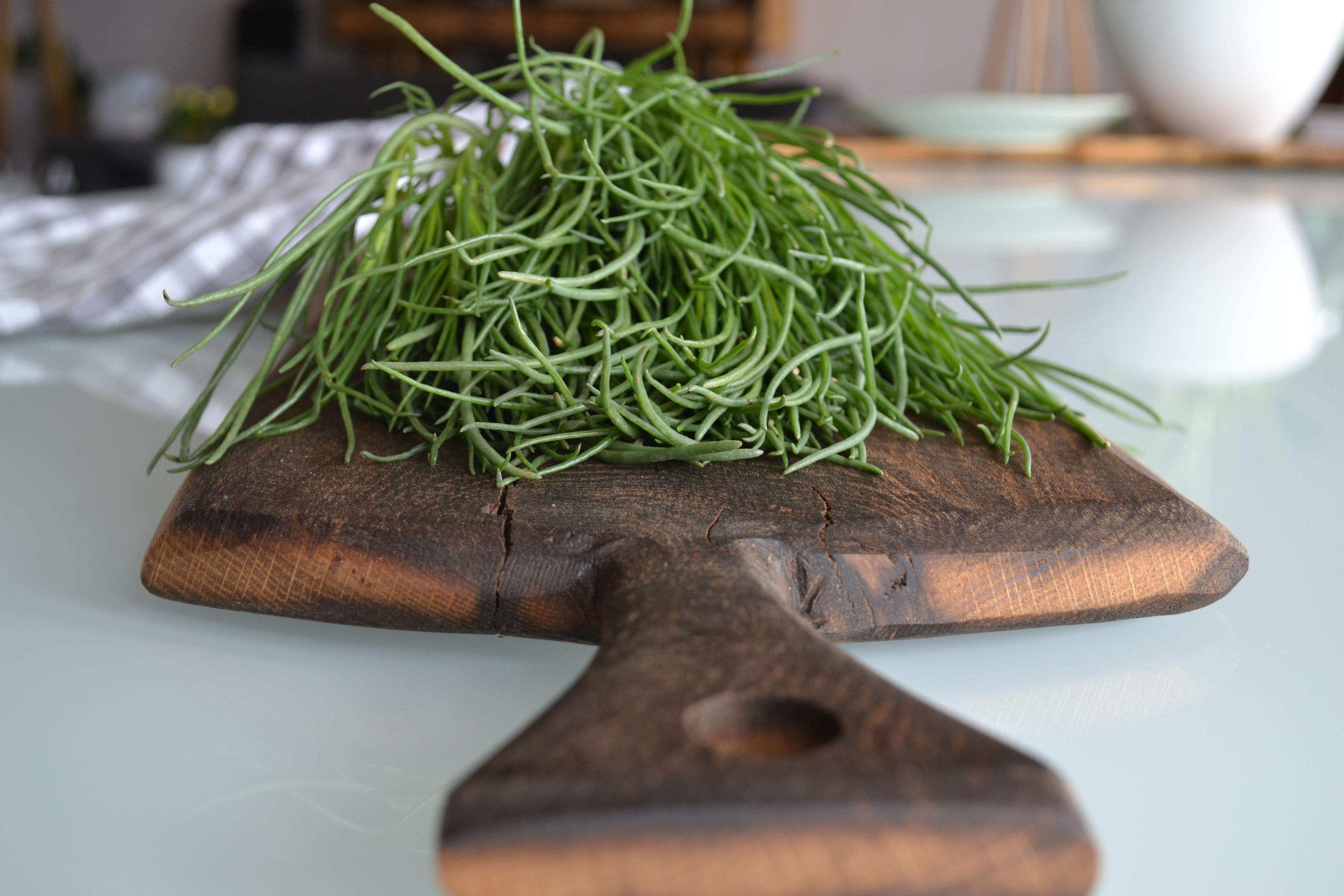 Schneidebrett Aus Holz Oder Kunststoff Was Ist Besser Kochzeit I Food Kitchen Lifestyle