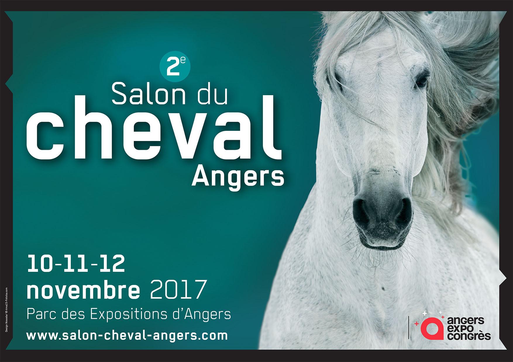 10 11 12 nov 2017 angers maison et chambres d 39 hotes de for Salon du cheval lyon 2017
