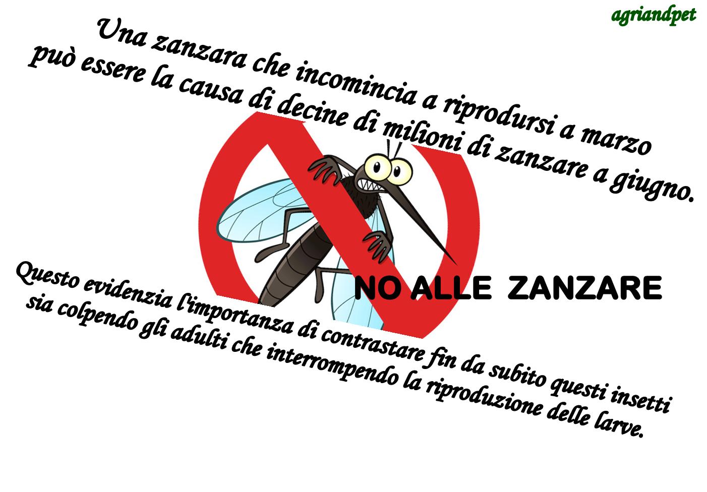 Quando iniziare la prevenzione contro le zanzare giardinaggio decorazioni e prodotti per il - Contro le zanzare in giardino ...