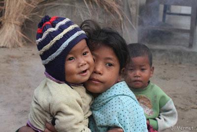Népal 2012