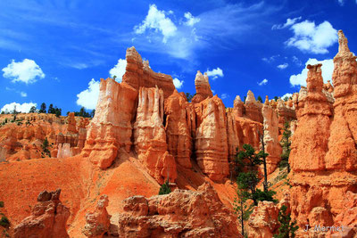 Brice canyon Ouest USA