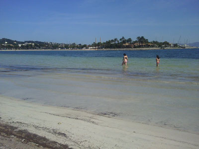 Gegenüber siehst Du unser Hotel! Der breite Sandstrand von Alcudia endet direkt am Hotel.