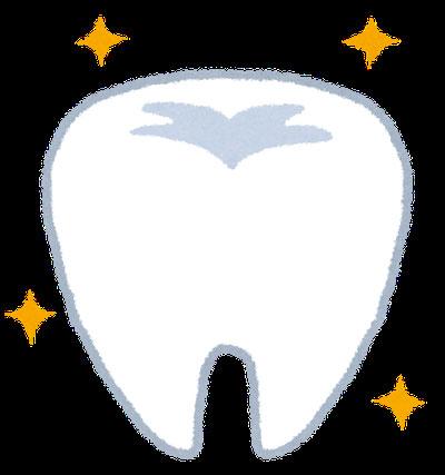 白磁会歯科