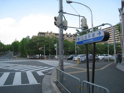 三色彩道(元千里北通り) 紅葉の名所になっている(吹田市)