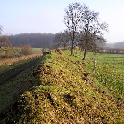 ドイツの世界遺産「ヘーゼビューとダーネヴィルケの考古学的境界線群 」、ダーネヴィルケ
