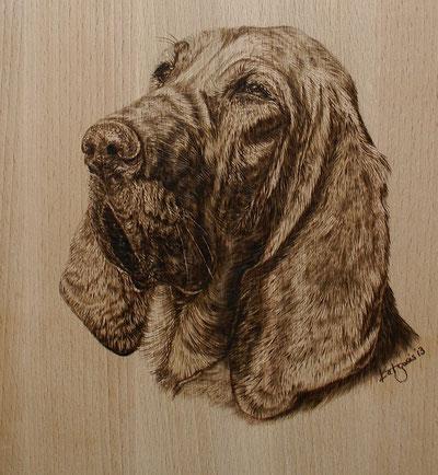 Bloodhound auf Buchenholz