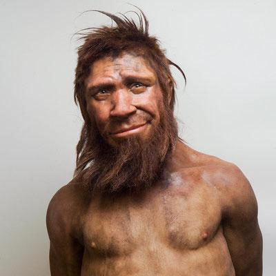 Reconstitution artistique de l'homme de Néandertal de SPY (Belgique) © AWPA ASBL