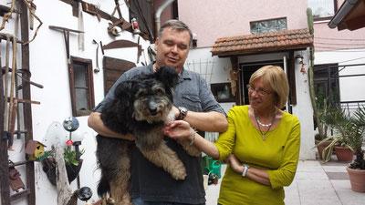 Unser Anton hat nach über 2 Jahren endlich sein großes Glück gefunden: eine eigene Familie. Er darf der Prinz sein und genau das hat dieser Traumhund sowas von verdient!!! Danke dass wir dich ein Stück begleiten durften lieber Toni, wir lieben dich!