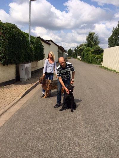 Rodnay (links) und Lady (rechts) durften gemeinsam in ihr neues Zuhause ziehen!