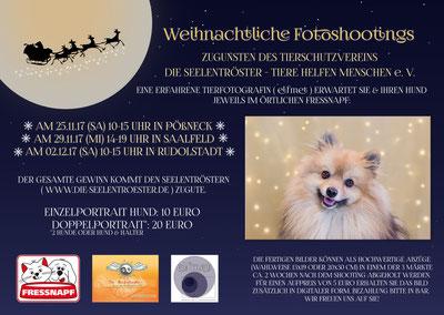 Großes Fotoshooting für Hundefreunde:-) Kommt vorbei :-)