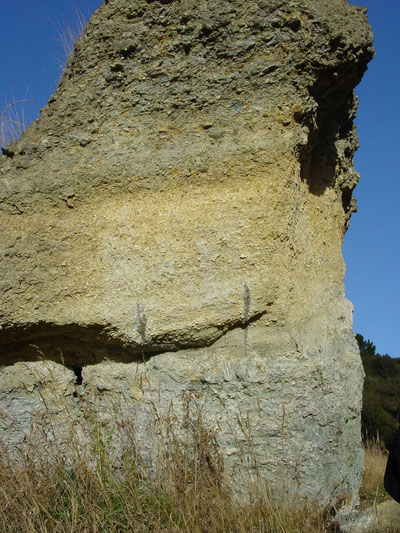 Remnant pillar of Blue Spur Conglomerate at Gabriels Gully