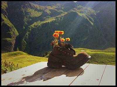Soulier, chaussure, lumière, fleur, montagne, rayon de lumière, Mont Blanc