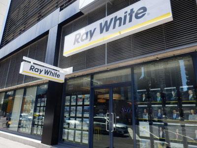 sydneyにも多いレイホワイトはCBD外のsouthbankで発見