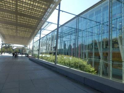 fitzroyのvictoria州立博物館へ