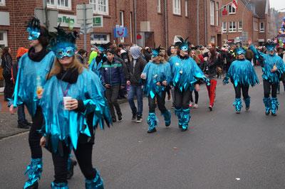 Karnevalsumzug, Fußgruppe im Umzug, Februar 2014