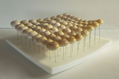 sensation no.10, marble/shells