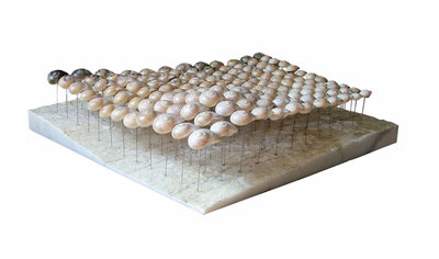 sensation no.3, marble/shells