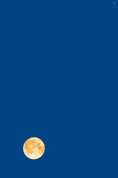 blue moon | pantone classic blue 2020 VISOVIO  | www.visovio.de