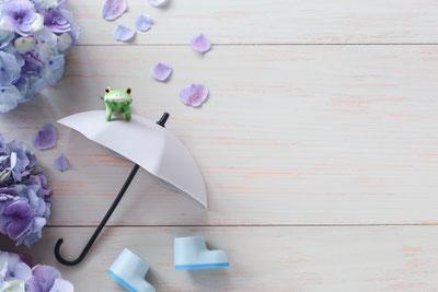 背の高さが違う春の花たち。チューリップやフリージア。多様性。