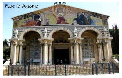 Tras los pasos de Jesús. Peregrinación a Tierra Santa - Andrés Sampedro