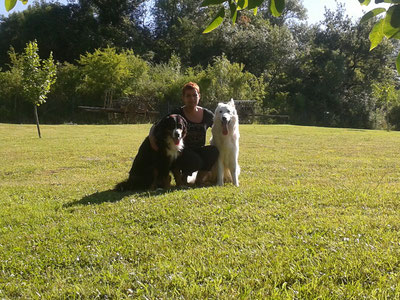 Pension canine Gironde