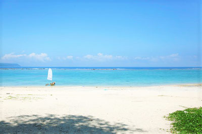 美ら海、ビーチ、絶景の東村。