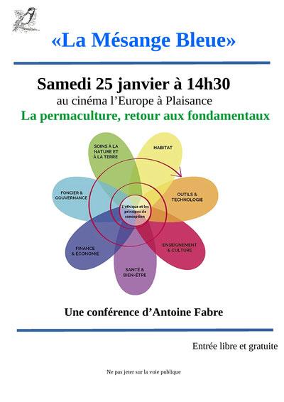 Conférence Plaisance du Gers, Mésange Bleue