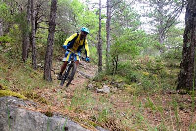 Ronde VTT des 3 Quilles - Sentier des Oliviers
