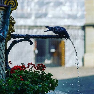 Durst by _bernstagram_Fotograf: @c.s.one_street