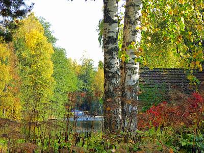Haus am Fluss Finnland Herbst Wanderung