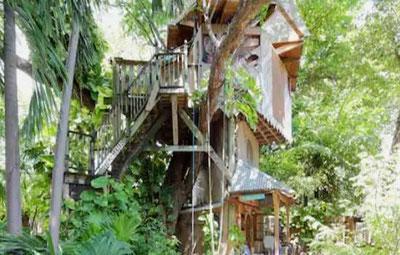MAG Lifestyle Magazin Reisen Urlaub USA Abenteuerurlaub Unterkünfte Abenteurer Airbnb Treehouse Canopy Room, Miami, Florida