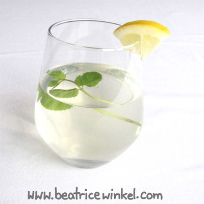 vegan elderflower lemonade with galgangal root
