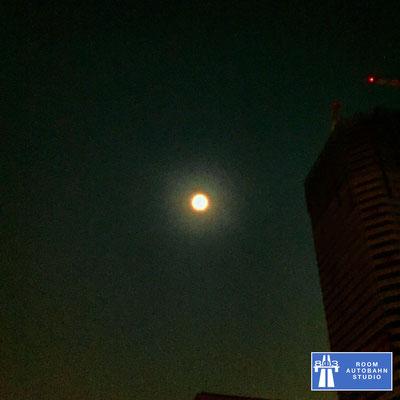 Blue Moon, ブルームーン