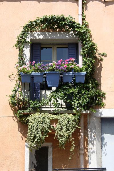 Bild: blumengeschmückter Balkon in Apt