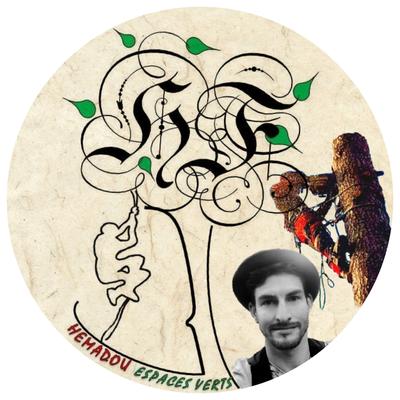 """logo d'un arbre avec texte """"hemadou espaces verts """" elagueur grimpeur arboriste avec une tronçonneuse"""