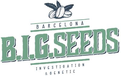 promocion semillas marihuana big seeds, semillas feminizadas big, panda pack, semillas feminizadas barcelona, bigseeds