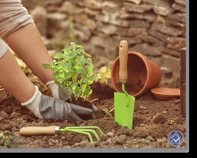 hilfsbereit.org Grafik zu Abschintt Haushaltshilfe und Gartenpflege