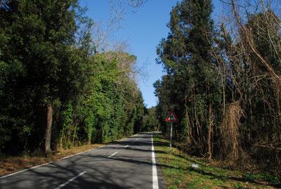 Rennradurlaub in der Toskana - Fahrt durch uralte Dörfer, über kurvige Anstiege, zum Blick ins Glück!