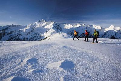 Wintersport accommodaties in Oostenrijk  Fügen