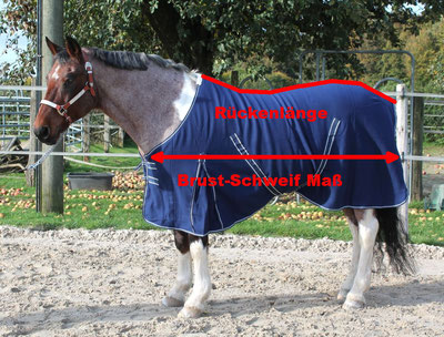 Pferdedecken Größe ausmessen