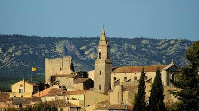 Ramonage à Mallemort et Aix en Provence