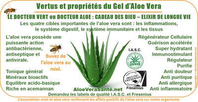 Vertus et propriétés de l'aloe vera | Le Docteur Vert ou Docteur Aloès - Comment profiter des bienfaits de l'Aloe Vera - Aloe Vera Santé Beauté