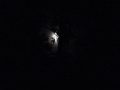 Fin de cuisson à Bouquet de Flammes - Photo de Lune -