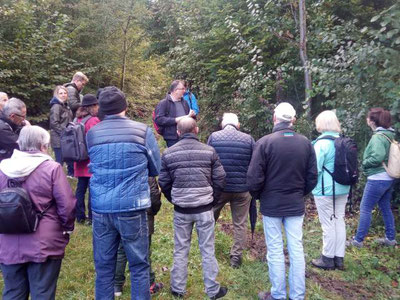 Spannendes aus dem Tannenbergwald in Gossau ZH. Bild: zvg