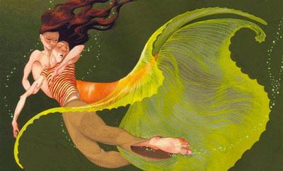 Il·lustracions de Dani Torrent