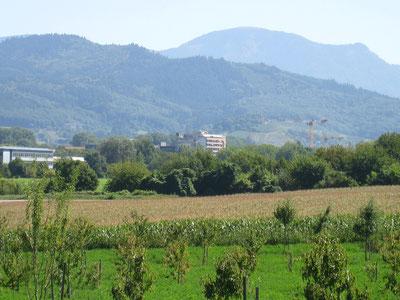 Herzzentrum Bad Krozingen
