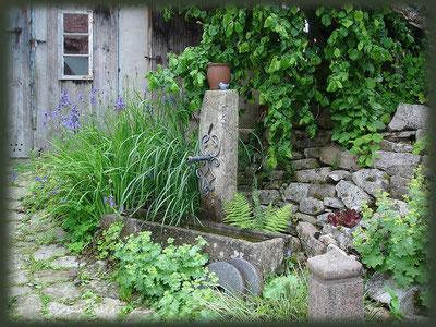 Der Eingang zum Hühnerstall und Hühnerhof liegt versteckt hinter einem Brunnen.